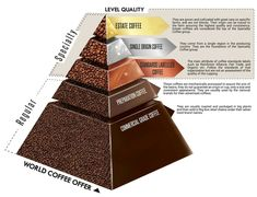 Make your own gourmet coffee start with the beans. Gourmet Coffee beans can be bought by the pound. Nyc Coffee Shop, Coffee Shops, Blended Coffee Drinks, Expresso Coffee, Latte, Coffee Infographic, Coffee Facts, Coffee Tasting, Coffee Type
