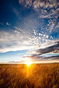 beautiful sky over the wheat fields of Southeast Colorado
