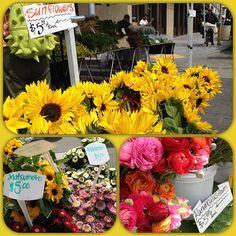 Happy first day Spring  Santa Monica Farmers Market #smfm #skylineflowers #mcgrathfarms #santamonica #cityofsantamonica #sunflowers #runonculus - @gothamsgirl- #webstagram