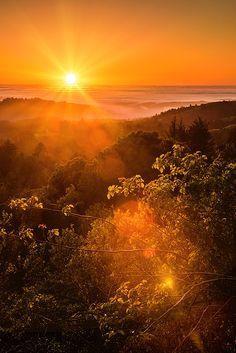 Title Sunset Fog Over The Pacific Artist Bryant Coffey Medium Photograph - Photograph Sunrise Photography, Landscape Photography, Nature Photography, Beautiful Sunset, Beautiful World, Coastal Pictures, Woman Riding Horse, Sunset Landscape, Natural Scenery