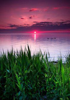 #scenery #views #photography