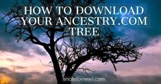 Download your ancestry.com family tree
