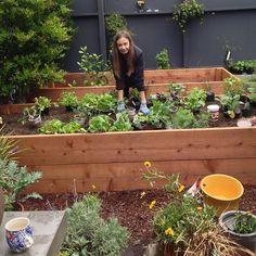 courtney klein - garden / raised beds