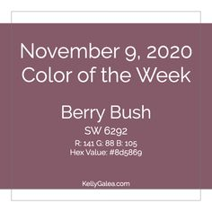 Color & Energy Reading for the Week of November 9, 2020 - Through the Kaleidoscope with Kelly Galea
