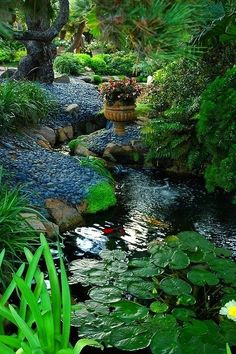 Enchanting garden built around a pond with a stream.