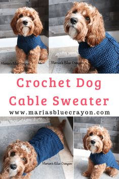 How to Crochet a Dog Sweater - Maria's Blue Crayon Crochet Dog Sweater Free Pattern, Knit Dog Sweater, Dog Pattern, Cable Sweater, Crochet Sweaters, Crochet Cable, Basic Crochet Stitches, Crochet Basics, Crochet Patterns