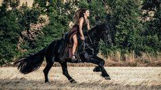 Backstage Girl Wild Horse HD (Friesian horse by Annathetekken)