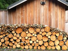 My kinda' wood pile!! Stacked alot in my life! Such a good feeling to stand back and look at it!