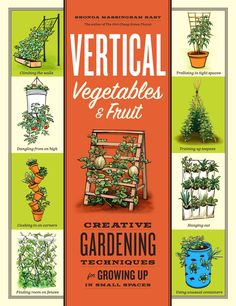 """Multi-level gardens and lots of container ideas. Great for small gardening spaces patios and yards. """"Vertical Vegetables & Fruit: Creative Gardening Techniques for Growing Up in Small Spaces"""" by Rhonda Massingham Hart star Awesome Jardin Vertical Diy, Vertical Garden Diy, Vertical Planting, Vertical Farming, Growing Tomatoes, Growing Vegetables, Growing Peas, Vegetables Garden, Veggies"""