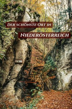 Steinwandklamm – The special destination in Lower Austria Austria, Wonderful Places, Beautiful Places, Reisen In Europa, Travel Companies, Holiday Looks, Outdoor Activities, The Great Outdoors, In The Heights