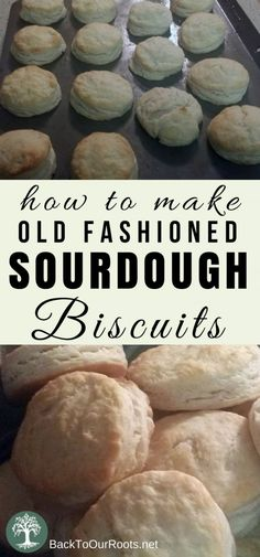 Flaky, Buttery, Old-Fashioned Sourdough Biscuits biscuit recipe;canned biscuit recipes; Sourdough Biscuits, Sourdough Recipes, Homemade Biscuits, Bread Recipes, Real Food Recipes, Baking Recipes, Homemade Breads, Starter Recipes, Homemade Vanilla