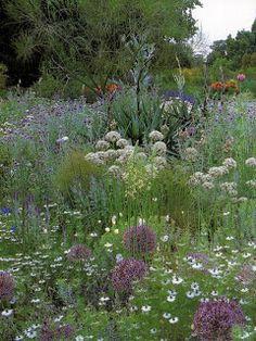 Beth Chatto garden Pinned to Garden Design - Planting Schemes by Darin Bradbury.