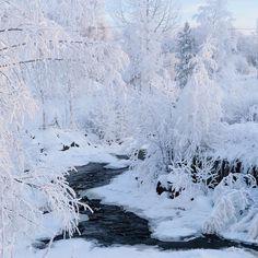 winter nature ~~ Overåsberget, Hedmark Fylke, Norway// photography by Sandra Linnell (@sannalinn)