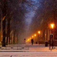 Snowing (colour version)  #snowing #almostapainting #östermalm #stockholm #visitstockholm #sweden #visitsweden #stockholm_insta #capitalofscandinavia #tweaked #travel #ttot #snowember