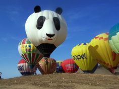 weird hot air balloons | hot air balloons hot air balloons unusual hot air balloons