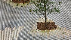 Sla :: ICC - Den internationale Domstol i Haag Landscape And Urbanism, Landscape Elements, Landscape Materials, Landscape Plans, Beach Landscape, Urban Landscape, Landscape Design, Tree Grate, Pavement Design