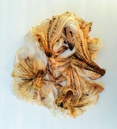 This silk scarf was dyed using rusty screws and a shibori binding technique. Click to check out the tutorial.