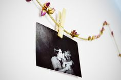 DIY rosebud garland and photo display
