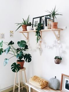 Inspiring and Natural DIY Hanging Plants for Your Home. Inspiring and Natural DIY Hanging Plants. Ornamental Plant Pots Hanging Walls - Today the price of land is very expensive, therefore houses have limit. Diy Hanging, Hanging Plants, Indoor Plants, Decoration Entree, Interior Design Minimalist, Plant Shelves, Home And Living, Living Room, Interior Inspiration