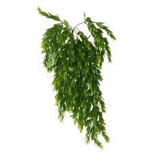 Hanging Foliage 25'' Green Plants, Artificial Plants, Be Perfect, Houseplants, Decoration, Herbs, Image, Type, Products