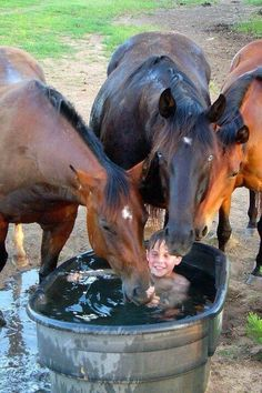 I can remember my brother and I playing in the water trough growing up on those hot summer days