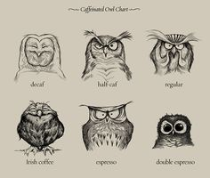 """For owl and coffee lovers...Illustrator Dave Mottram has created """"Caffeinated Owls,"""" a funny cartoon that illustrates various types of coffee with adorable owls. Prints, t-shirts, iPhone cases and other merchandise featuring ..."""