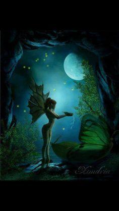 **Night fairy