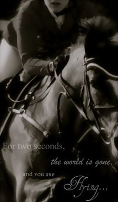 """For two seconds, the world is gone, and you are flying..."" #equestrian #equine"