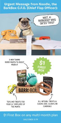 Start any multi-month subscription by Friday 5/19 and get your first BarkBox for just $1! Surprise your dog with a monthly box of unique toys and all-natural treats.