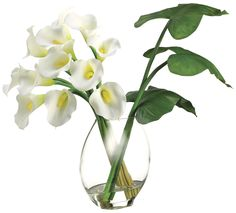 Calla Lily with Leaves Arrangement