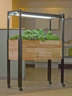 Indoor Garden - Kitchen Garden 365 | Gardeners.com