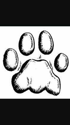 Coyote Prints vs Dog Prints Mountain