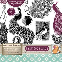 50% Sale - Peacock Clip Art  -  ClipArt - Transfer Sheets - JPG, PNG & Photoshop Brushes - Peacock Silhouette - Bird Digital Stamps on Etsy, $3.48