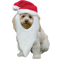 CHRISTMAS SANTA HAT WITH BEARD FOR PETS - DOGS/ CATS @ £1.15
