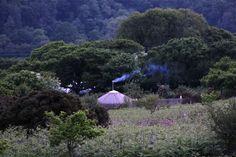 Smoke rising from our 18ft Oak Wood Yurt