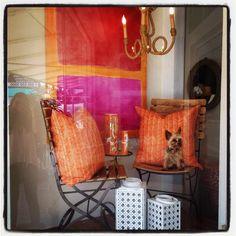 Tuni Tuesdays in #PalmBeach #orangeandpink #seating window display #dogsofmecox #Mecox #interiordesign #mecoxgardens #furniture #shopping #design #decor #home #designidea #room #vintage #antiques #garden