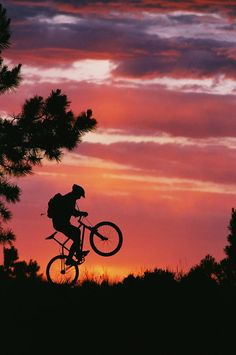 ✮ Mountain Biker Silhouetted