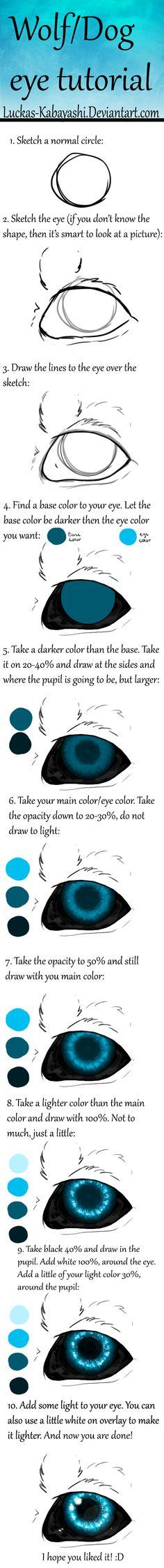 wolf_dog_eye_tutorial_by_luckas_kabayashi-d8r5xrv.png 472 × 4495 bildepunkter
