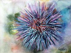 AQUARELLE - Oursin par Nicole L. Vehicles, Sea Urchins, Water Colors, Car, Vehicle, Tools