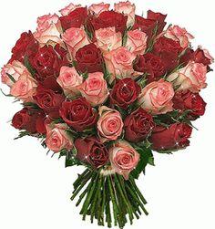 Rosas de color rojo y rosadas formando un hermoso ramo brillantes con movimiento