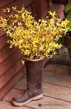Forsythia in an old rain boot....adorable  to set on the front porch!  And the price is right....especially if you have a forsythia bush in your yard!  ;)
