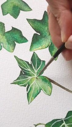 Here's how to paint on thin tiny veins within an ivy leaf watercolour illustration. These are perfect for adding some special hand painted touches to some floral or country wedding stationery. Watercolor Plants, Watercolor Leaves, Watercolor Artwork, Watercolor Illustration, Watercolor Animals, Watercolor Background, Watercolor Landscape, Simple Watercolor, Tattoo Watercolor