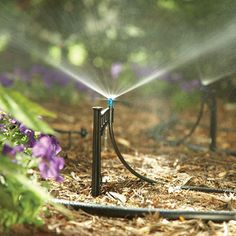 12 DIY Drip irrigation watering systems and complete procedure on how to set up . - 12 DIY Drip irrigation watering systems and complete procedure on how to set up a drip irrigation s - Greenhouse Interiors, Diy Greenhouse, Garden Irrigation System, Garden Sprinklers, Water Sprinkler, Drip System, Deciduous Trees, Water Conservation, Water Systems
