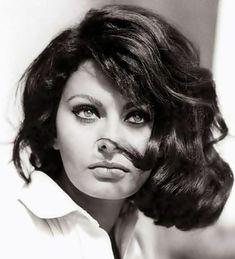 Todays obsession: Sophia Loren