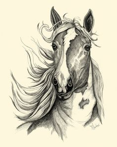 Textured Horse Sketch by JLBurkeArt on Etsy