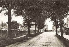 The Avenue Combe Down about 1908 Bath Uk, Historical Images, Somerset, Family History, Bristol, Old Photos, Past, Sidewalk, England