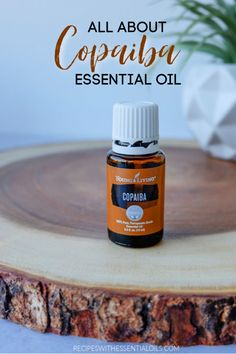 All About Copaiba Essential Oil - Recipes with Essential Oils Young Living Copaiba, Young Living Oils, Young Living Essential Oils, Copaiba Essential Oil, Cedarwood Essential Oil, Essential Oil Uses, Natural Lifestyle, Radiant Skin, Aromatherapy