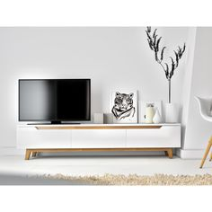 Mikkel TV Stand   Wayfair