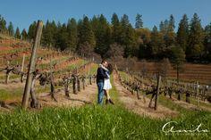 Boeger Winery Apple Hill