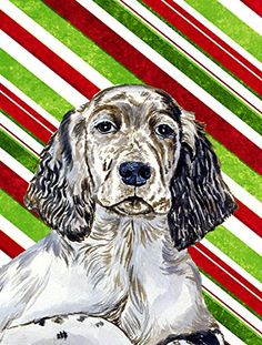 Carolines Treasures LH9232GF English Setter Candy Cane Holiday Christmas Flag Small Multicolor ** See this great product.